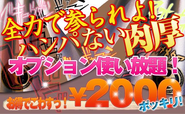 オプション使い放題¥2000ポッキリ!